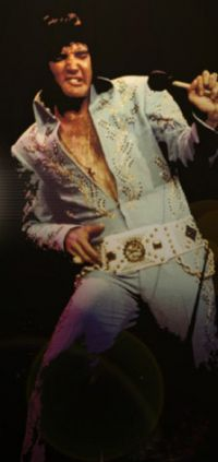 Elvis Presley Afternoon Show Madison Square Garden June10th 05.jpg