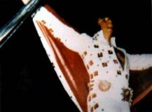 Elvis Presley Evening Show Madison Square Garden June10th 44.jpg