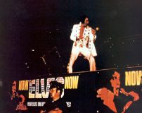 Elvis Presley Afternoon Show Madison Square Garden June11th  10.jpg